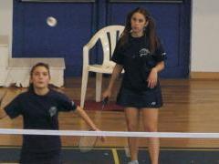 Αντιπτέριση - Badminton