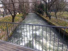 bolboi_2.jpg