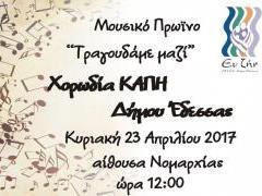 kapi_edessas_horodia_23_aprilioy_2017_ora_12_nomarhia_.jpg